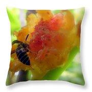 Succulent Fig Throw Pillow by Karen Wiles