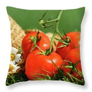 Summer tomatoes Throw Pillow by Sandra Cunningham