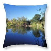 Summertime Reflections Throw Pillow by Kathy Yates