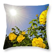 Sunflare and Yellow Roses Throw Pillow by Amber Flowers
