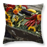 Sunflowers, Dahlias, Eggplants, Pepper Throw Pillow by Jonathan Blair