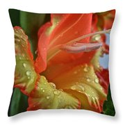 Sunny Glads Throw Pillow by Susan Herber