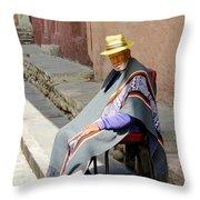 Sunny Grandpa II Throw Pillow by Al Bourassa