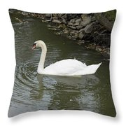 Swan Along The Shoreline Throw Pillow by Corinne Elizabeth Cowherd