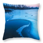 Swan Throw Pillow by Davorin Mance