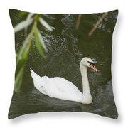 Swan Enjoying A Swim Throw Pillow by Corinne Elizabeth Cowherd