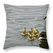 Swimming Lessons Throw Pillow by Heather Applegate