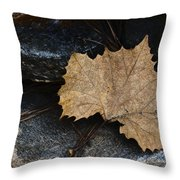 Tears To Fall Throw Pillow by Kelly Rader