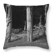 The Abandoned Villages Of The Seagoing Throw Pillow by Barry Tessman
