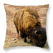 The American Buffalo Throw Pillow by Bill Cannon