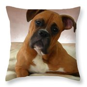 The Boxer Throw Pillow by Snake Jagger