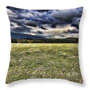 The Cattle Farm Throw Pillow by Douglas Barnard
