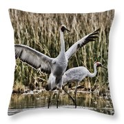 The Conductor Throw Pillow by Douglas Barnard