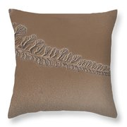 The Dry Colorado River Delta Stands Throw Pillow by Pete Mcbride