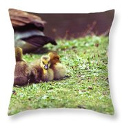 The First Family Throw Pillow by Karol Livote
