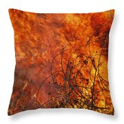 The Flames Of A Controlled Fire Throw Pillow by Joel Sartore
