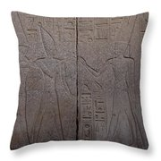 The Gods Horus And Amun Are Represented Throw Pillow by Taylor S. Kennedy