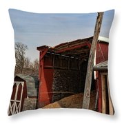 The Grain Barn Throw Pillow by Paul Ward
