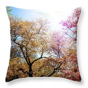 The Grandest Of Dreams - Cherry Blossoms - Brooklyn Botanic Garden Throw Pillow by Vivienne Gucwa