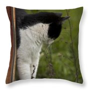 The Hunt Throw Pillow by Kim Henderson
