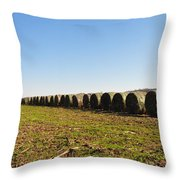 The Line Up Throw Pillow by Bill Cannon