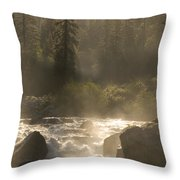The North Fork Of The Stanislaus River Throw Pillow by Phil Schermeister