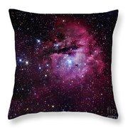 The Pacman Nebula Throw Pillow by Robert Gendler