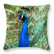 The Peacock Throw Pillow by Paul Ge
