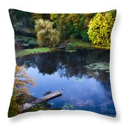 The Pond 2 Throw Pillow by Kathleen A McDermott