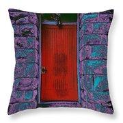 The Red Door Throw Pillow by Tim Allen
