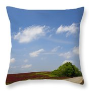 The Road Ahead Is Lined In Red Throw Pillow by Kathy Clark
