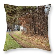 The Road To Redemtion Throw Pillow by Robert Margetts