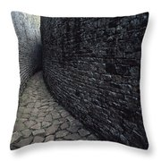 The Ruins Of Great Zimbabwe Were Built Throw Pillow by James L. Stanfield