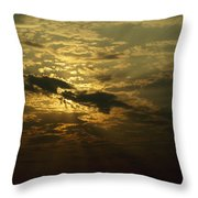 The Sun Obscured By A Late Afternoon Throw Pillow by Jason Edwards