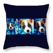 The Three Amigos Teacup Chihuahua Throw Pillow by Peggy  Franz