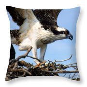 The True Fisherman Throw Pillow by Karen Wiles