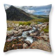 The Valley Throw Pillow by Adrian Evans
