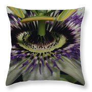 The Vivid Purple And Intricate Throw Pillow by Jason Edwards