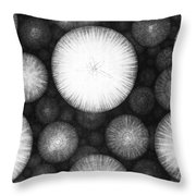 Theory Of The Universe Throw Pillow by Granger