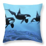 Three Male Killer Whales Swim Throw Pillow by Corey Ford