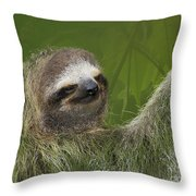 Three-toed Sloth Throw Pillow by Heiko Koehrer-Wagner
