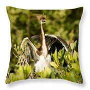 Three Tricolored Heron Egretta Tricolor Throw Pillow by Tim Laman