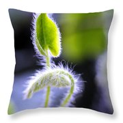 Tiny New Leaves Throw Pillow by Judi Bagwell