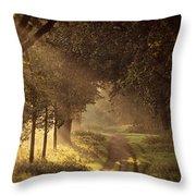 To The Shire Throw Pillow by Studio Yuki