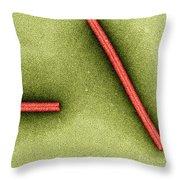 Tobacco Mosaic Virus, Tem Throw Pillow by Omikron