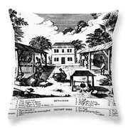 Tobacco Plantation, C1670 Throw Pillow by Granger