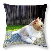 Toby Old Mill Cat Throw Pillow by Sandi OReilly