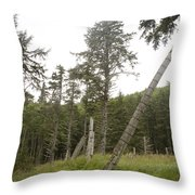 Totem Poles Stand In A Deserted Village Throw Pillow by Taylor S. Kennedy