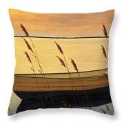 Trading Places Throw Pillow by Diane Romanello