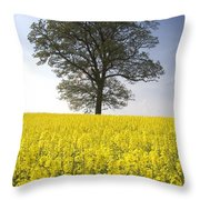 Tree In A Rapeseed Field, Yorkshire Throw Pillow by John Short